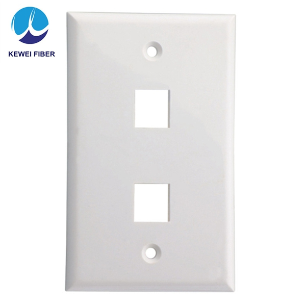 Ethernet <strong>Network</strong> Cat5E Wall Plate - Dual (2 Port) RJ45 Connector Socket Wiring Plug Jack Decorative Face Cover Outlet Mount Pane