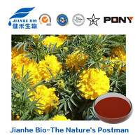 Marigold Extract Xanthophyll Lutein for Yellow Dye