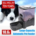 LCD Display Large Auto Pet Food Feeder