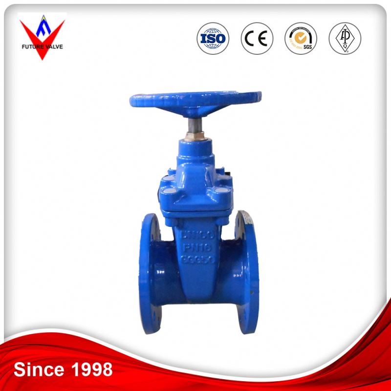Mss Sp-70 Cast Iron Gate Valve 1 Inch