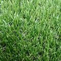 20mm light cheap artificial grass yarn stock synthetic turf for decoration use