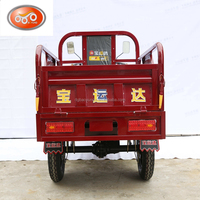 550-1000W motor tricycle/ adult three wheel bikes/cargo scooters china