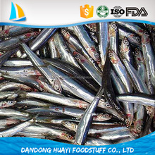 hot sale best whole anchovy fish iqf