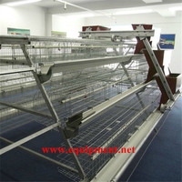 Dingtuo 120 Birds Design Layer Chicken Cages