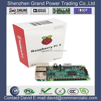Sales Agent Raspberry Pi Model