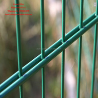 Direct factory Welded 2D Galvanized Double Wire Mesh Fence