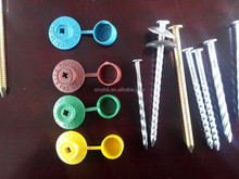 Galvanized Screw with cap 7*110MM nail bulk packing 500 pcs /ctn nails bright Trade ssurance sinolink