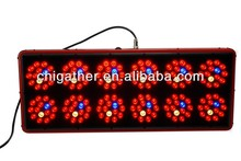 2014 best apollo 12 luminacion led para el cultivo for growing plants/Hydroponics alibaba made in China