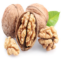 Walnut, Walnut Kernel, Thin Shell Walnut