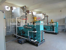 Natural gas/LPG powered generators/Co genration CHP