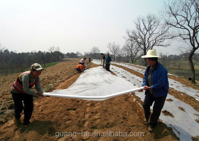 100% Biodegradable clear plastic mulching film for agriculture