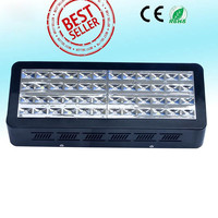 240X5W Hydroponics Low Power Consumption Led Grow Light Greenhouse Led Grow