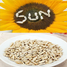 Market Price Confectionary Sunflower Seeds Kernels Sell