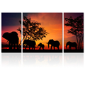 "Tropical Style Animal Photo Printing on Canvas Elephant Picture Canvas Art Home Decoration(24""x24""+12""x24""x2PCS) Ready to Hang"