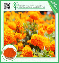 High quality Marigold Extract Lutein 20% powder Orange natural pigment