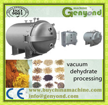 Large-scale Vacuum Freeze Dryer for fruit dehydrator