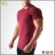 2017 Wholesale Custom 95 Cotton 5 Elastane Plain Seamless Men Fitness Tshirts