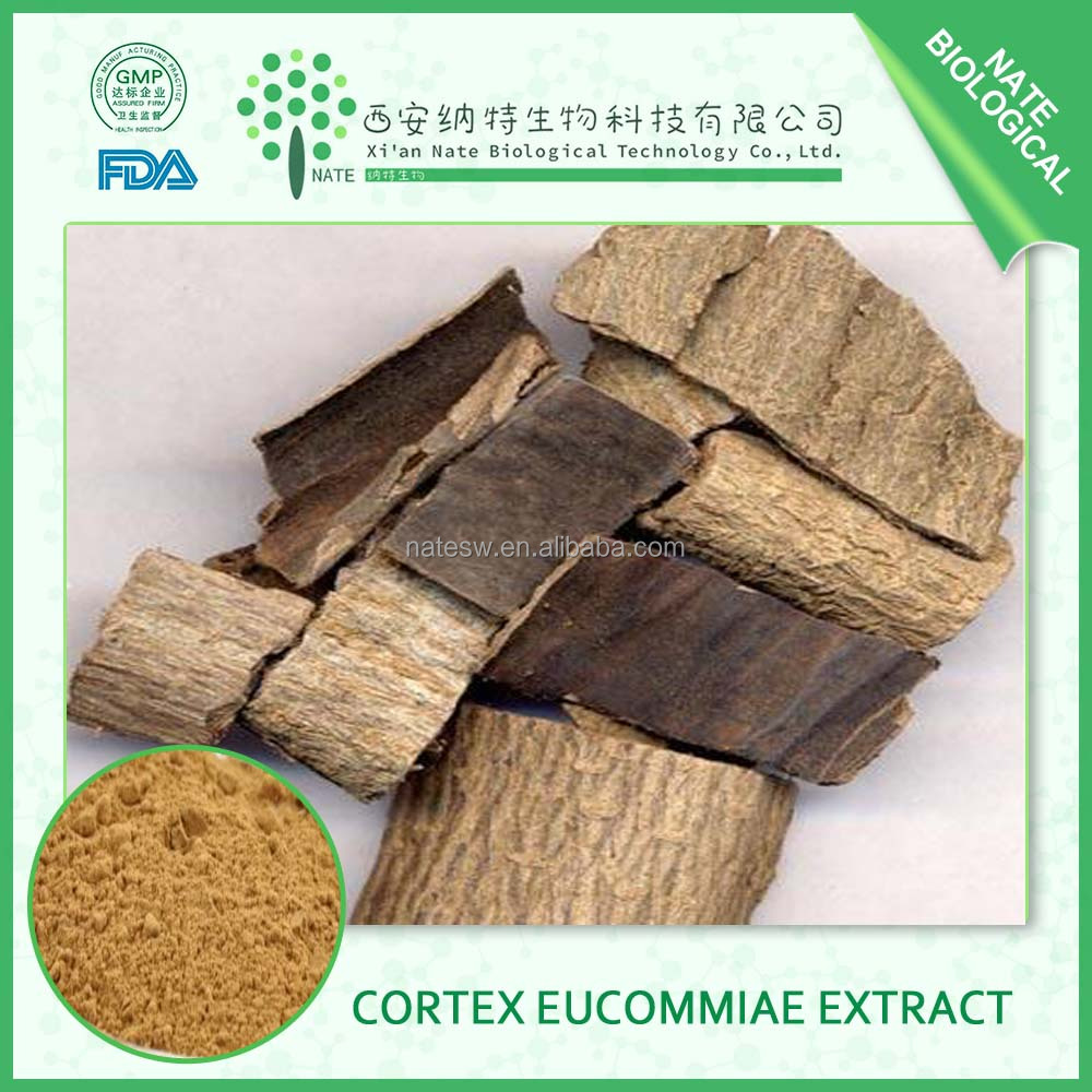 Factory wholesale Chlorogenic acid low price Eucommia ulmoides oliver Cortex Eucommiae
