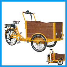 3 Wheel Pedal Assistant Electric Tricycle Cargo