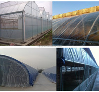 China greenhouse cover/clear plastic film for greenhouse/PE cover sheet for greenhouse
