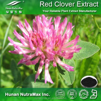 Red Clover Extract Powder 8% 20% 40% Isoflavones