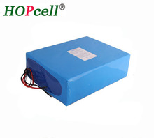 China HOT sale Electric car battery pack 48v 20ah li ion battery pack 48v 1000w