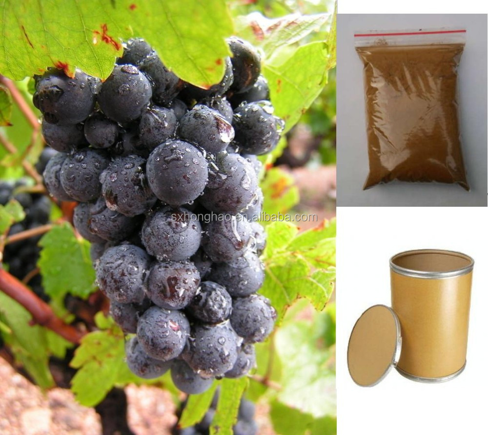 Top Quality 100% natural 5% resveratrol powder red grape skin extract