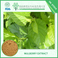 Latest Style High Quality Plant Extract paper mulberry dry extract