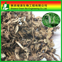 Wholesale Price and High Quality Black Cohosh P.E.