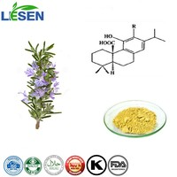 rosemary leaf extract 5%-90% Carnosic Acid