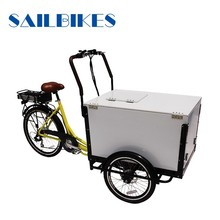motorized ice cream cargo tricycle