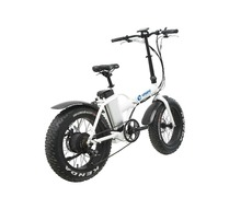 Enwe 20inch Electric Bicycle Folding Electric Mountain Fat Bike 500w