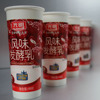 paper material flexo printing yogurt single wall paper cup