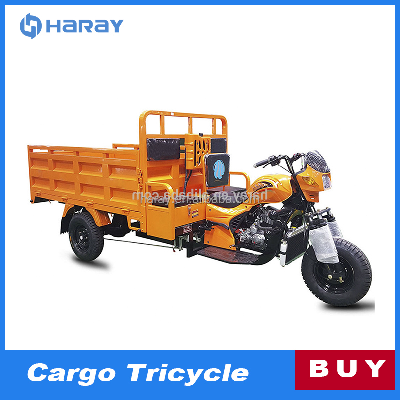 200cc Powerful Engine Cargo Motorized Trike Motorcycle for Sale