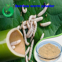 GMP factory suppy top quality Bamboo worm powder/worm powder/Bamboo worm powder