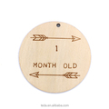4 inch Monthly Milestone Baby Laser Cut Wood Photo Prop Sign Designed and Customized