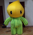HOLA high quality fruit mascot costume/watermelon mascot costume
