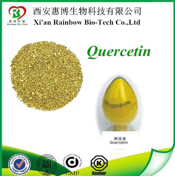 95% quercetin by hplc 3,3',4',5,7-Pentahydroxyflavone CAS NO.117-39-5 quercetin Supplier quercetin plant extract anti-cancer