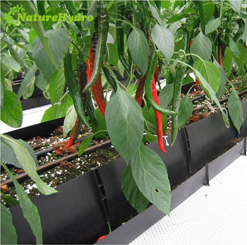 Hydroponic gutters use it with our pp roll hydroponic troughs