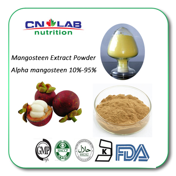 Wholesale Natural Mangosteen Peel Extract Mangosteen 10% 20% Polyphenols