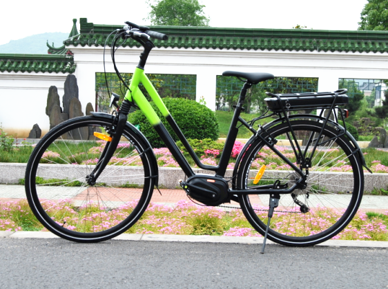 made in China central drive motor electronic cycle 250w in China