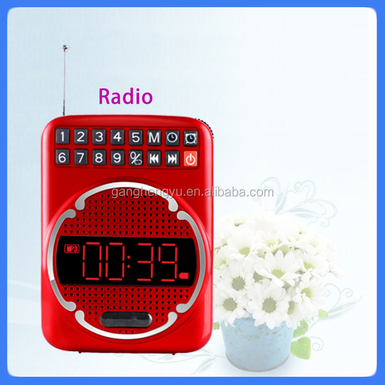 Exquisite two way digital FM radio with USB