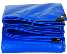 car cover blue pe tarpaulin export to South Africa