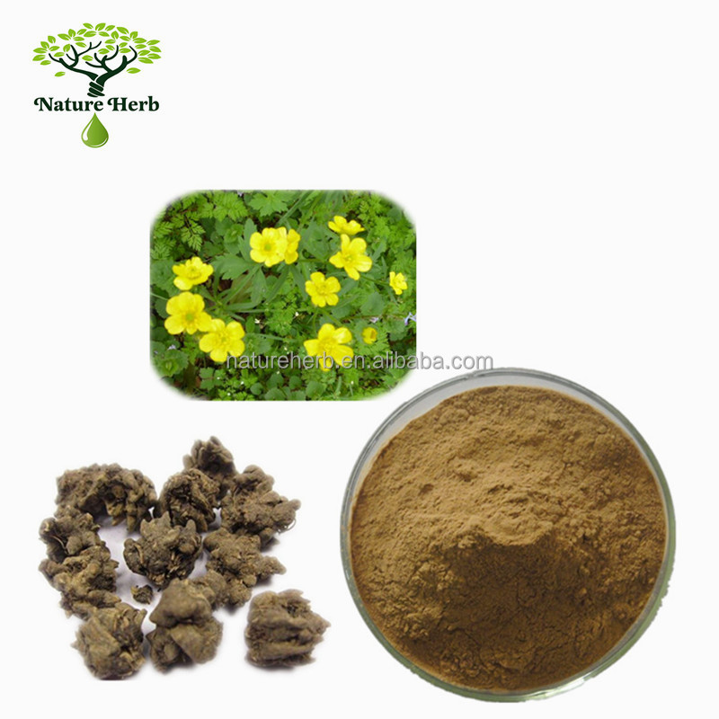 100% Pure Organic Cat's Claw P.E. Alkaloids Powder