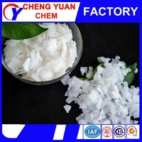 caustic soda flakes / pearls/ manufacturing plant