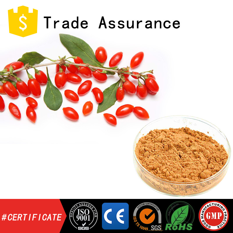 dissolvable Wolfberry Powder pure natural goqi extract powder Wolfberry Extract