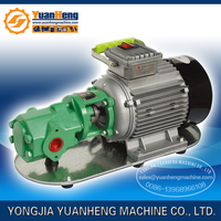 mini diesel fuel transfer pump with 110V/220V/380V and gear structure