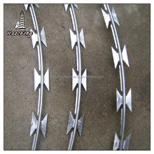 Galvanized razor barbed wire fencing