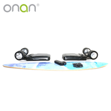 wholesale cheapest Custom hub motor longboard deck electric skateboards wood for sale