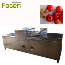 Hot selling date seed removal machine / fruit stone extractor / Date Kernel Extractor Machine